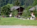 Été 2006 (51/533)